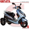 Three Wheels Electric Scooter with Lead Acid Battery (D680)