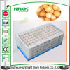 Stackable and Foldable PP Material Plastic Egg Crate