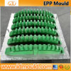 Plastic Mould Injection/EPS/EPP Mould