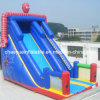 Commercial Inflatable Slide for Amusement Park (CYSL-563)