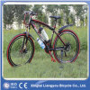 Mountain Electric Bicycle for Woman, Rear Motor 250W, CE/En15194, ISO9001