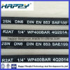 "Dn 1/4"" R2 Wire Braided Rubber Hose"