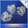 Heilex Ring of Plastic Tower Packing -China Supplier