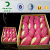 Pink Color Foam Net for Packaging Mango