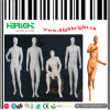 Full Body Male Fiberglass Dummy Models