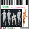 Full Body Male Fiberglass Mannequin