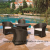 All Weather PE Rattan Rattan Wicker Patio Garden Outdoor Furniture (TG-JW80)
