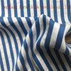 Silk Cotton Big Stripe Fabric
