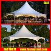 Hexagonal Pinnacle Facet Tent for 50 100 Seater Wedding Fitness Party Event