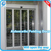 Automatic Door (Folding Type)