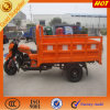 China Manufacturer New Tricycle Sccoter 150cc/200cc/250cc