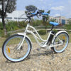 36V City Ebike 250W Road E Bike