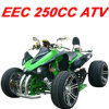 250CC Automatic Racing ATV (MC-388)
