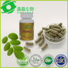 Private Label Green Leaf 500mg Moringa Capsules