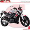 250cc 4-Stroke Engine Racing Motorcycle with EEC (GM250-21A)