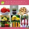 Price Preferential Herbicides Haloxyfop-Methyl (95%TC, 108g/L EC)