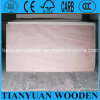 Okoume Veneer Plywood/ 18mm Commercial Plywood