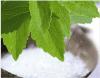 Natural Sweetener Stevia P. E., Stevia Extract, Rebaudioside a, Stevioside