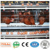Electric Galvanized Poultry Farm Layer Cages