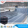 Self Adhesive Sbs Modified Bituminous Waterproof Membrane for Foundations
