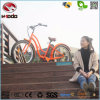Fat Tire Bike Electric Beach Bicycle Wonderful Gift to Girl