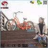 Fat Tire Bike Electric Beach Bicycle Wonderful Gift to Girl