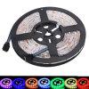 12V IP65 RGB SMD5050 LED Strip
