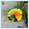 Sunglasses Mirror Lens Polycarbonate Lens with Revo Coating