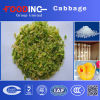 High Quality Dried Processed Dehydrated Cabbage Granules Flakes Powder Manufacturer