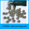 The Best Selling Small Size Neodymium Disc Magnet