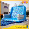 Inflatable Rock Climbing Wall for Sale (AQ1906-2)