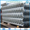 Galvanized Black Scaffolding Pipes
