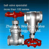 Non-Rising Stem Threaded Stainless Steel Gate Valve