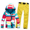 High Quality Outer Wear Windproof Waterproof Women Ski Jacket
