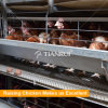 Best sale H Frame 3/4/5/6/8 Tiers Automatic Battery Chicken Cage