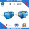 High Output Electric Motor with Differenct Color (Y160M-4)