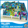 Fish Theme Design for Indoor Playground Sets (QL-11213G)