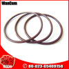 Hot Selling K38 Cummins Engine Part O Seal Ring 205216