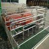 Galvanized Steel Hog Swine Pig Farrowing Crate