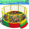 Newest Large Software Ocean Ball Pool with Enclosure (M11-10502)