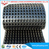 High Quality HDPE Dimple Drainage Board with Cheap Price