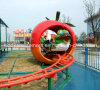 Crazy Amusement Park Rides Children Roller Coaster
