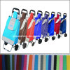 Shopping Trolley Bag with 2 Wheels (XY-401)