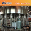 Automatic Pet Bottle Water Rinsing Filling Capping Machine