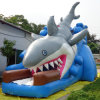 Inflatable Shark Slide for Amusement Park (CYSL-590)