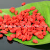 100% Organic Goji Berry in 220-500 Grains/50g