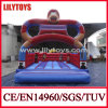 Red PVC Inflatable Bouncer for Sale