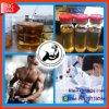 Customized Injectable Steroid Oil Trenbolone Acetate /Finaplix H/Revalor-H for Bodybuilding
