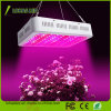High Power 300W-2000W Double Chips LED Grow Light Full Spectrum with UV and IR for Greenhouse and Indoor Plant Flowering Growing