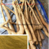 Tongkat Ali Extract / Pure Tongkat Ali Root Powder (Manufacturer Stock Supply)